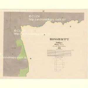 Rosshaupt - c6597-1-014 - Kaiserpflichtexemplar der Landkarten des stabilen Katasters