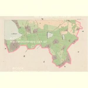 Lassenitz - c3807-1-006 - Kaiserpflichtexemplar der Landkarten des stabilen Katasters