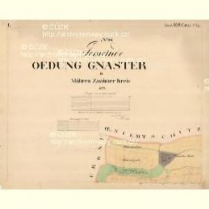 Gnaster - m0733-2-001 - Kaiserpflichtexemplar der Landkarten des stabilen Katasters