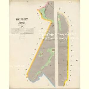 Thonbrun - c7496-3-002 - Kaiserpflichtexemplar der Landkarten des stabilen Katasters