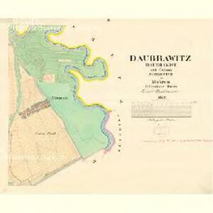 Daubrawitz (Daubrawice) - m0563-1-002 - Kaiserpflichtexemplar der Landkarten des stabilen Katasters