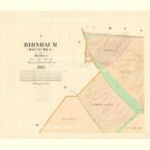 Birnbaum (Hruschka) - m0917-1-001 - Kaiserpflichtexemplar der Landkarten des stabilen Katasters