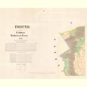 Todtnie - c7937-1-001 - Kaiserpflichtexemplar der Landkarten des stabilen Katasters