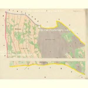 Niedergrund - c1362-2-001 - Kaiserpflichtexemplar der Landkarten des stabilen Katasters