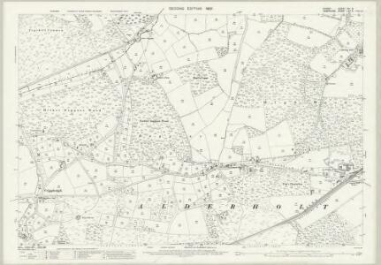 Dorset XVI.8 (includes: Alderholt; Damerham) - 25 Inch Map