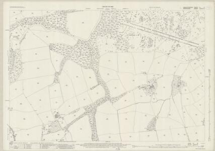 Herefordshire III.6 (includes: Bromfield; Burrington) - 25 Inch Map