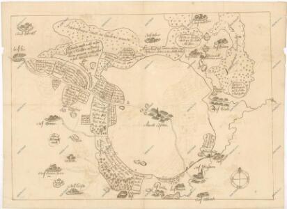 Záměrná mapa hranic lesů a pozemků v okolí městečka Lišov 1