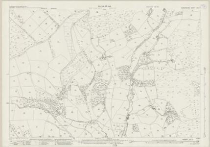 Radnorshire XVIII.7 (includes: Knighton; Norton) - 25 Inch Map
