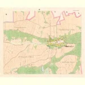 Tillmitschau (Tumaczow) - c7927-1-003 - Kaiserpflichtexemplar der Landkarten des stabilen Katasters