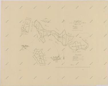 Porostní obrysová mapa polesí Domanín 1