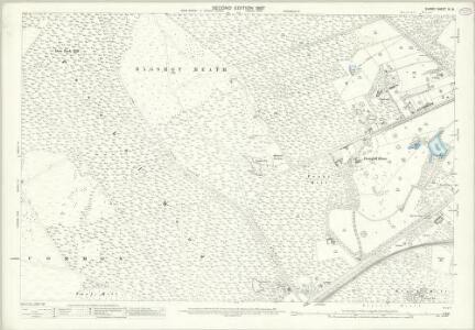 Surrey IX.16 (includes: Frimley; Windlesham) - 25 Inch Map