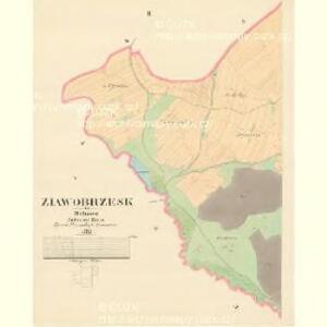 Ziawobrzesk - c9323-1-002 - Kaiserpflichtexemplar der Landkarten des stabilen Katasters