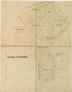 Mapy lesních porostů svěřeneckého panství Kout - revír Liščí