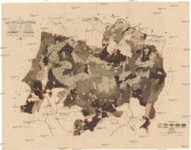 Mapa dřevin revírů Kunštátského, Černovodského, Říčeckého a Zdobnického, patřících svěřenskému statku Rychnovu