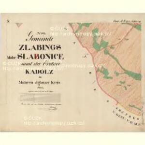 Zlabings - m2780-1-015 - Kaiserpflichtexemplar der Landkarten des stabilen Katasters