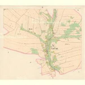 Mitteldorf (Prostřednjrokitnitce) - c6135-1-002 - Kaiserpflichtexemplar der Landkarten des stabilen Katasters