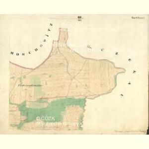 Saborz - c9010-1-003 - Kaiserpflichtexemplar der Landkarten des stabilen Katasters