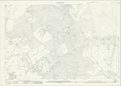 Surrey X.10 (includes: Chobham; Windlesham) - 25 Inch Map