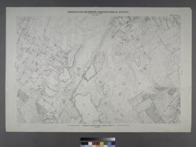 Sheet No. 33. [Includes Concord, Grasmere, Fort Wadsworth and Rose Bank.]; Borough of Richmond, Topographical Survey.