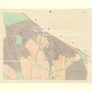 Tschemin (Czemin) - c0842-1-003 - Kaiserpflichtexemplar der Landkarten des stabilen Katasters