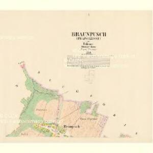 Braunpusch (Praporzisst) - c6083-1-001 - Kaiserpflichtexemplar der Landkarten des stabilen Katasters