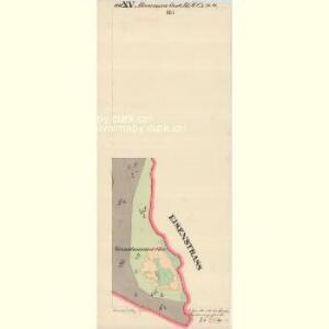 Hammern - c1768-1-029 - Kaiserpflichtexemplar der Landkarten des stabilen Katasters