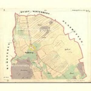 Salzweg - c7139-1-001 - Kaiserpflichtexemplar der Landkarten des stabilen Katasters