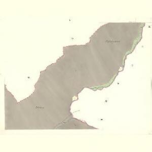 Passek - m2230-1-005 - Kaiserpflichtexemplar der Landkarten des stabilen Katasters