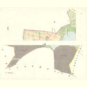 Tuchonitz - c8100-1-004 - Kaiserpflichtexemplar der Landkarten des stabilen Katasters