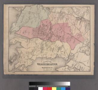 Plate 50: Town of Westchester, Westchester Co. N.Y.