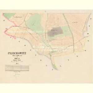 Przichowitz (Přichowice) - c6237-1-004 - Kaiserpflichtexemplar der Landkarten des stabilen Katasters