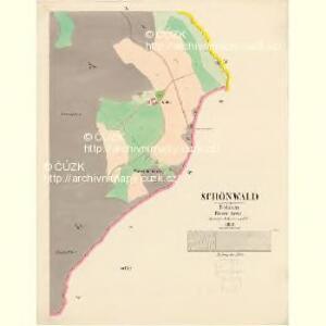 Schönwald - c3869-2-008 - Kaiserpflichtexemplar der Landkarten des stabilen Katasters