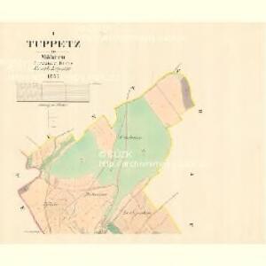 Tuppetz - m3171-1-001 - Kaiserpflichtexemplar der Landkarten des stabilen Katasters