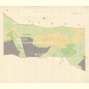 Brumow - m0231-1-011 - Kaiserpflichtexemplar der Landkarten des stabilen Katasters