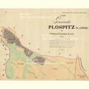 Plospitz - m2301-1-001 - Kaiserpflichtexemplar der Landkarten des stabilen Katasters