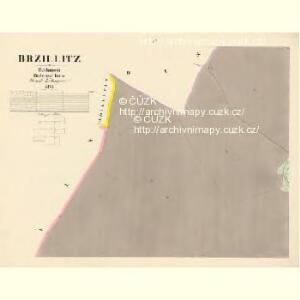 Brzillitz - c0612-1-004 - Kaiserpflichtexemplar der Landkarten des stabilen Katasters