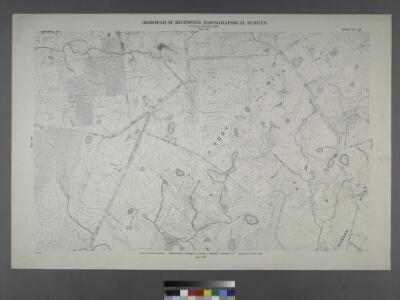 Sheet No. 39.[Includes Ocean Terrace, Manor Road, Egbert Avenue, Walkers lane Todt Hill Road in Todt Hill and Dongan Hills.]; Borough of Richmond, Topographical Survey.