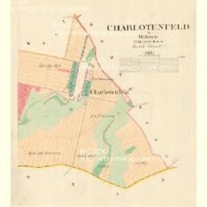Charlotenfeld - m1151-1-002 - Kaiserpflichtexemplar der Landkarten des stabilen Katasters