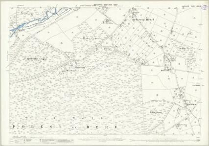 Hampshire and Isle of Wight LXVII.6 (includes: Soberton; Swanmore) - 25 Inch Map