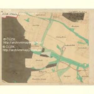 Piesling - m2287-1-005 - Kaiserpflichtexemplar der Landkarten des stabilen Katasters