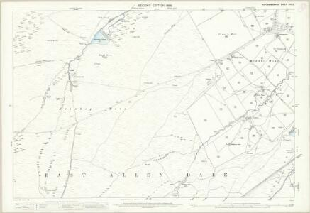 Northumberland (Old Series) CXI.2 (includes: Allendale Common; Allendale) - 25 Inch Map