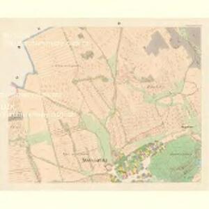 Trzemoschna (Trzemossna) - c8065-1-003 - Kaiserpflichtexemplar der Landkarten des stabilen Katasters