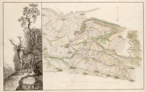 GeneralKarte des Gerauer und Mönchsbrucher Forsts nebst dem darinnen enthaltenen Wildparc