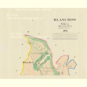 Blaschow - m0113-1-001 - Kaiserpflichtexemplar der Landkarten des stabilen Katasters