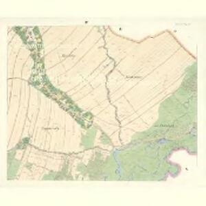 Petrowitz (Pustěgowo) - m2489-1-004 - Kaiserpflichtexemplar der Landkarten des stabilen Katasters