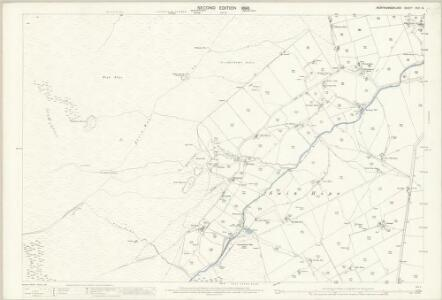 Northumberland (Old Series) CVII.14 (includes: Allendale Common; Allendale) - 25 Inch Map