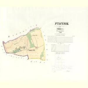 Ptacznik - m2478-1-001 - Kaiserpflichtexemplar der Landkarten des stabilen Katasters