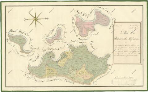 Geometrický plán luk v revíru Hamr, služebních pozemků, lučního hajného a emfyteutických pozemků 1