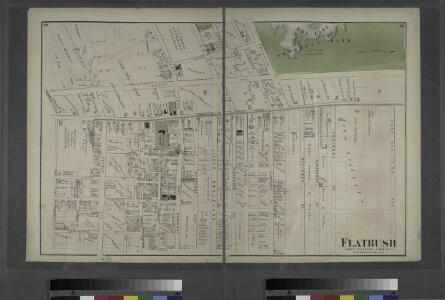 Flatbush. Town of Flatabush, Kings Co. L.I. - Prospect Park.
