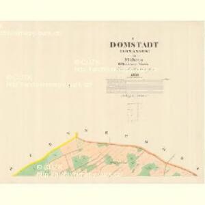 Domstadt (Domassow) - m0557-1-001 - Kaiserpflichtexemplar der Landkarten des stabilen Katasters